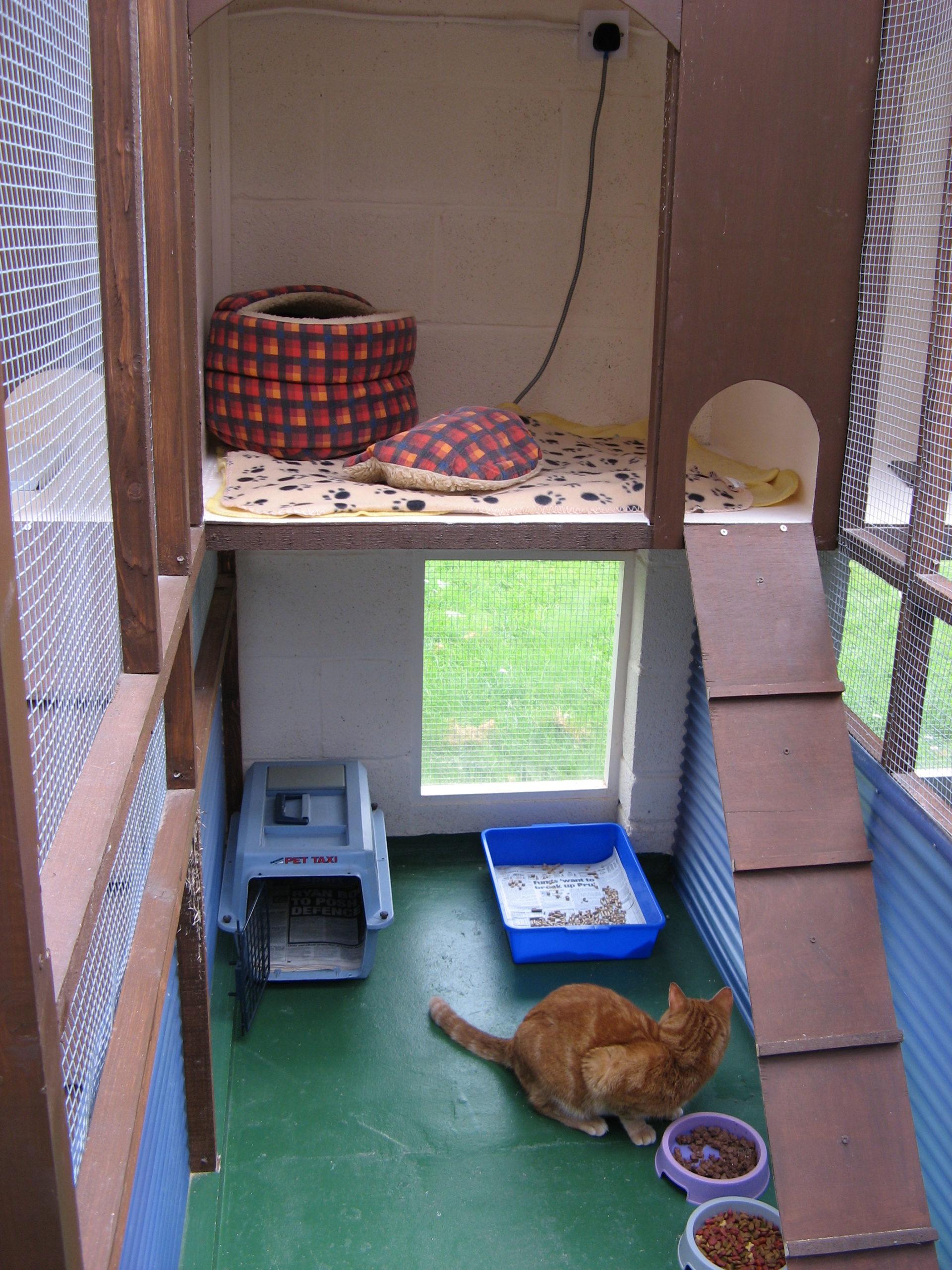 Individual Cat Unit